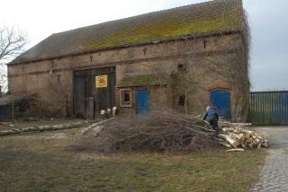 Baumfällarbeiten 2