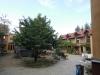 Innenhof mit Kirschbaum